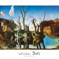 Salvador Dalí - Reflections of Elephants